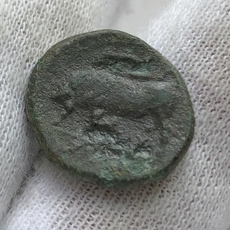 Древнегреческая монета Сицилии