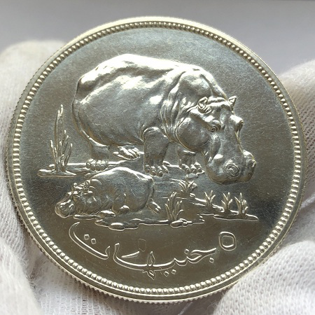 Серебряная монета Судана